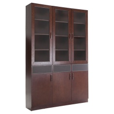 Tanessy 6-Door Book Case