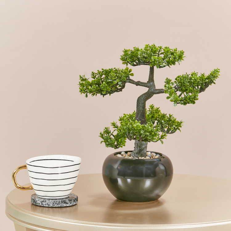 Bonsai Tree with Pot - 33 cm
