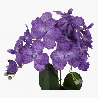 Orchid with Wall Mounted Pot 49 cms