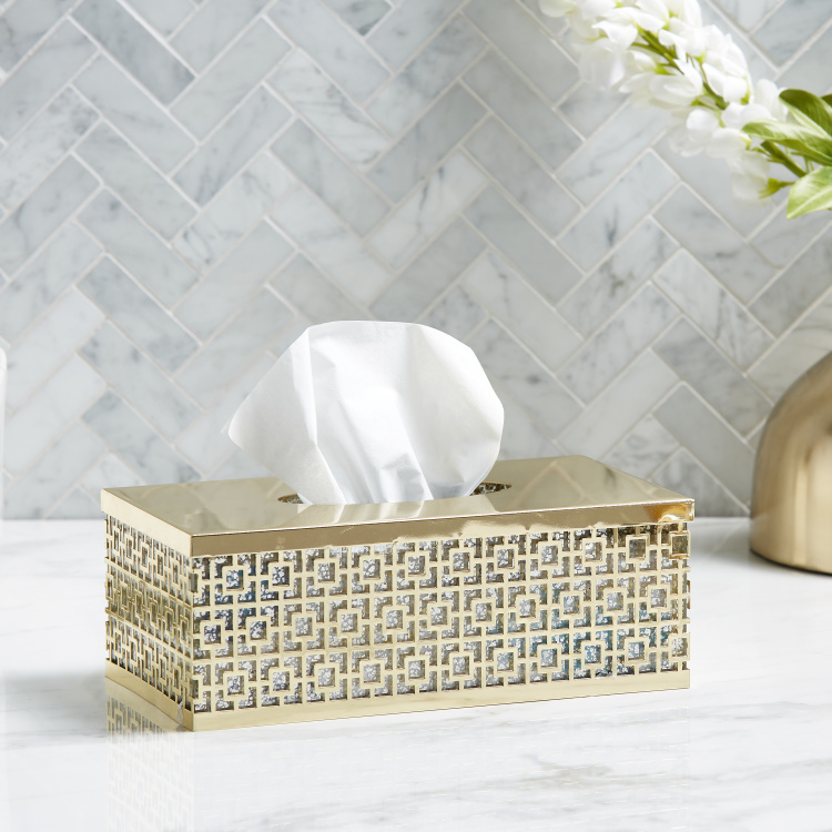 Magnificent Tissue Box Cover