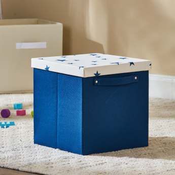 Stefie's Cube Box with Lid and Handle - 30x30x30 cms