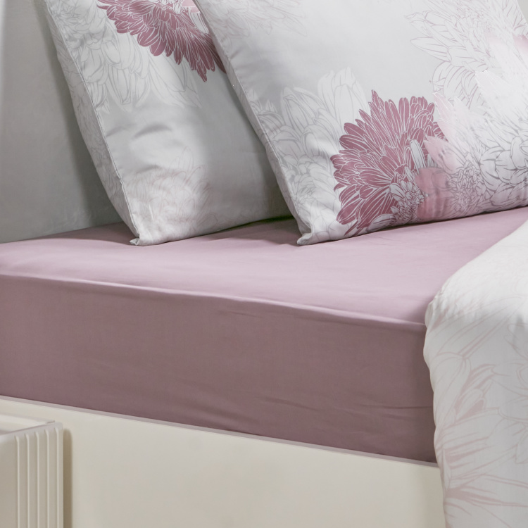 Eternity Luxe Full Fitted Sheet - 120x200 cm
