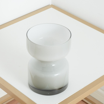 Curvy Frosted Glass Vase