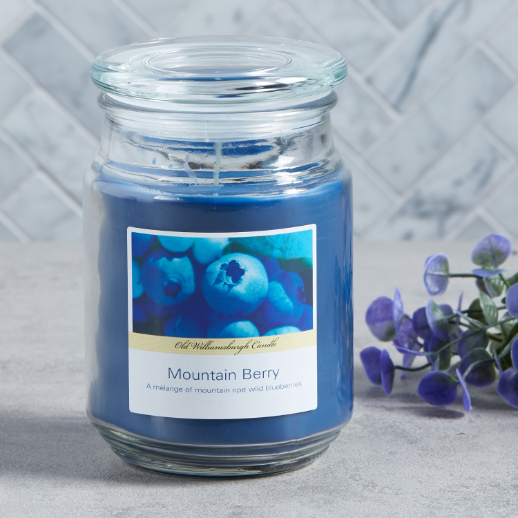 OWB Mountain Berry Apothecary Scented Glass Jar Candle